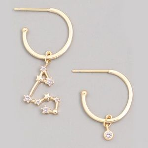 Jewelry - AQUARIUS Zodiac Gold Huggie Hoop Earrings